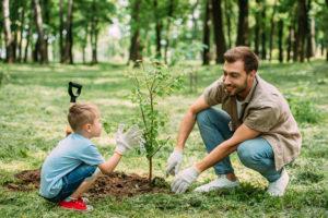 Geimeinsam einen Baum pflanzen